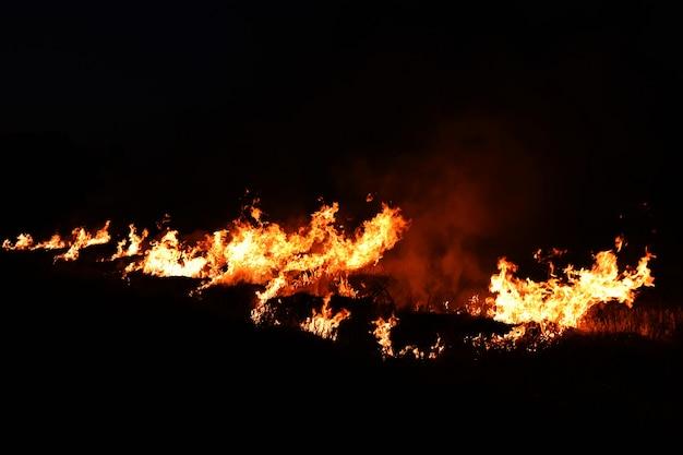 暗闇の中で火の炎