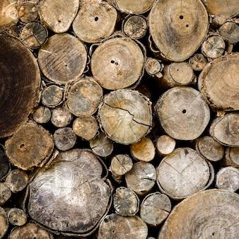 Плоскость сечения дерева