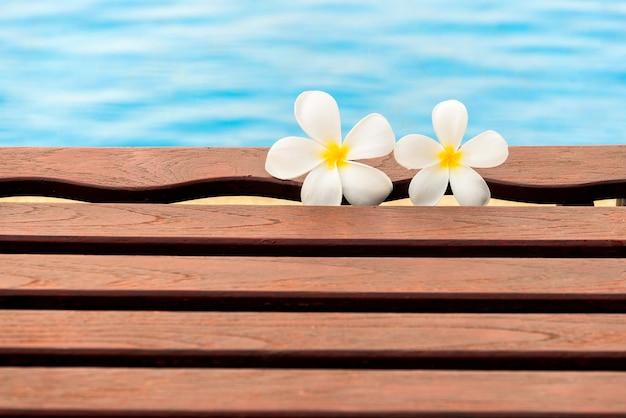 スイミングプールにあるプルメリアの花