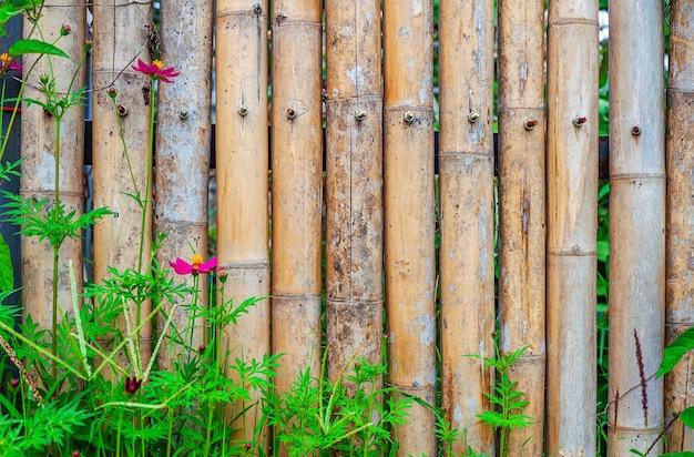 自然の中の花と古い竹フェンス