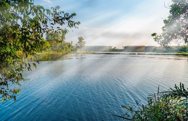 Река с листьев дерева и солнечного луча