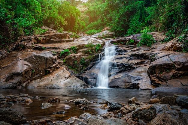 Водопад в лесу с природой зеленого дерева