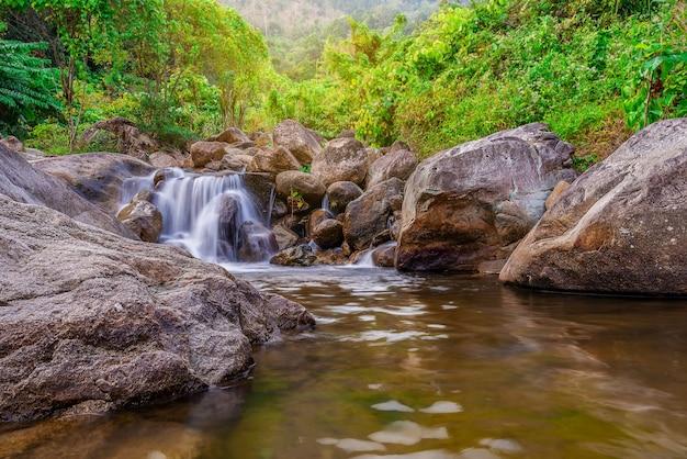川の石と木、カラフルな森の水川の木を見る