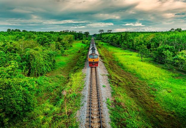 Поезд на железнодорожном транспорте в лесу на закате