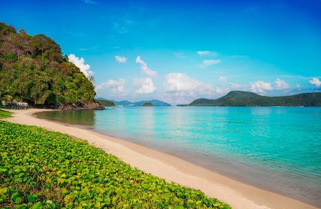 青い空のビーチの砂と青い海の自然