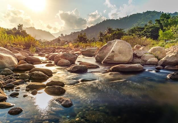 Речной камень и дерево с лучом солнца, каменная река и луч солнца в лесу