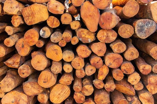 木炭工場でマングローブ林のスタック