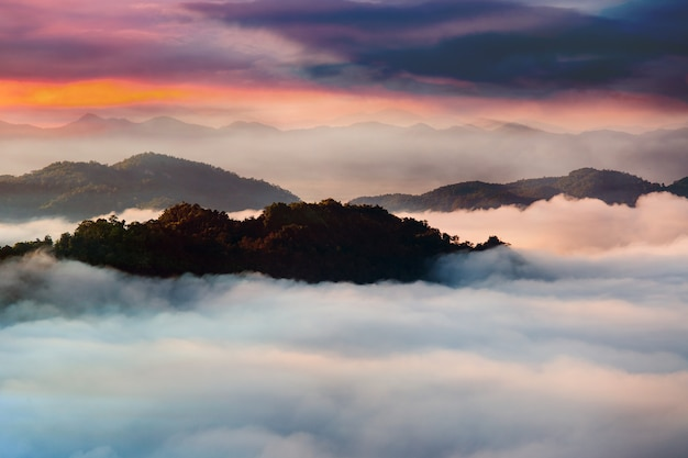 夕日と山の美しい夏の風景