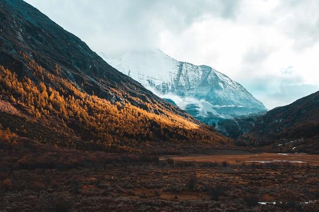 秋の森と雪の山でカラフルです