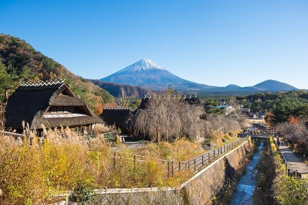 彩野弥生野佐藤十八(癒しの里)彩の湖の富士の背景。