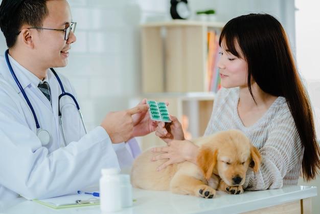 獣医は、病気のゴールデンレトリーバー子犬のためのかわいい女性に薬を与える