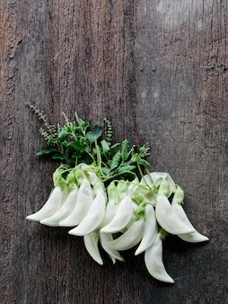 Агаста, сесбан, овощной колибри
