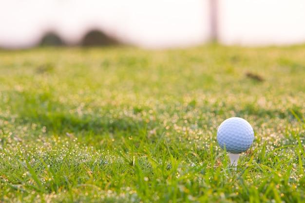 ティーのショットの準備ができてのゴルフボール