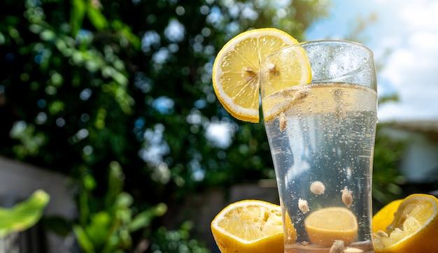 透明なガラスのソーダラモン水
