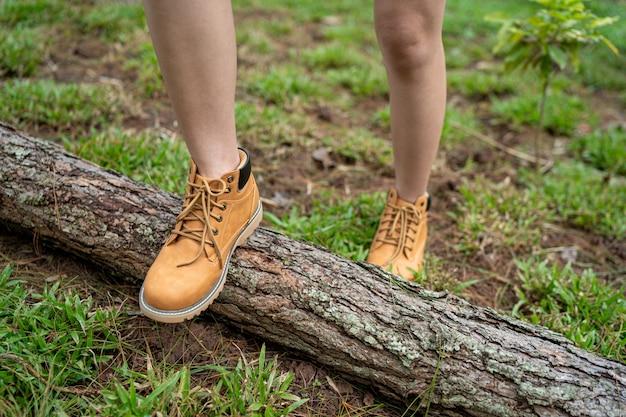 冷たい松林の中を歩く女性