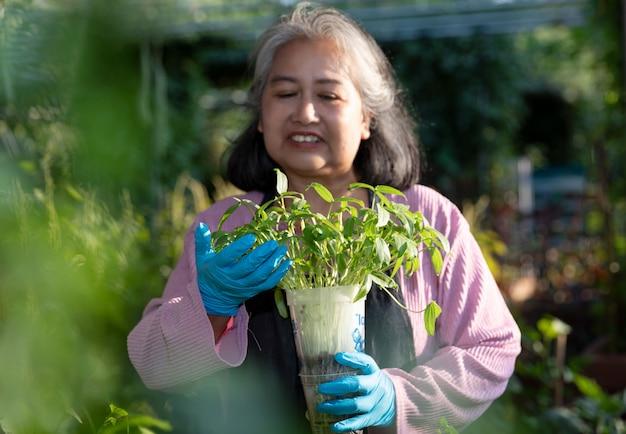 Выбытая старшая женщина усмехаясь и держа бак ростка на внешнем саде.