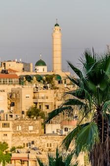 Вид на минарет и арабские дома в иерусалиме через пальмы в иерусалиме