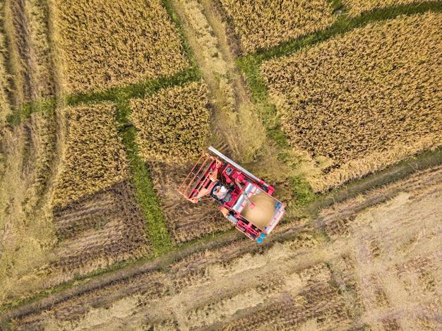 収穫期の稲作農家のトラクター