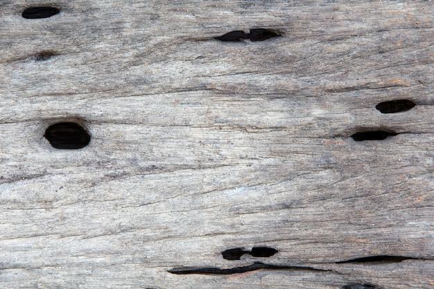 木の古いカットの表面のクローズアップ