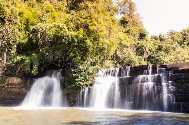 Живописная природа красивого водопада в бассейн пресной желтой воды озера в диком лесу