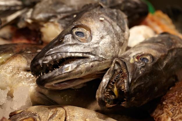 シーフード。魚の頭。