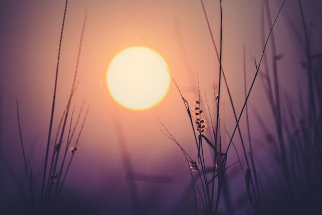 美しい空と夕日の背景。
