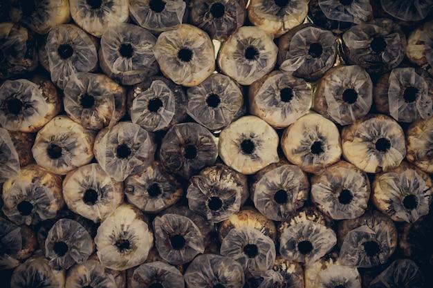 Крупный план выращивание грибов ангела растя на предпосылке полиэтиленового пакета.