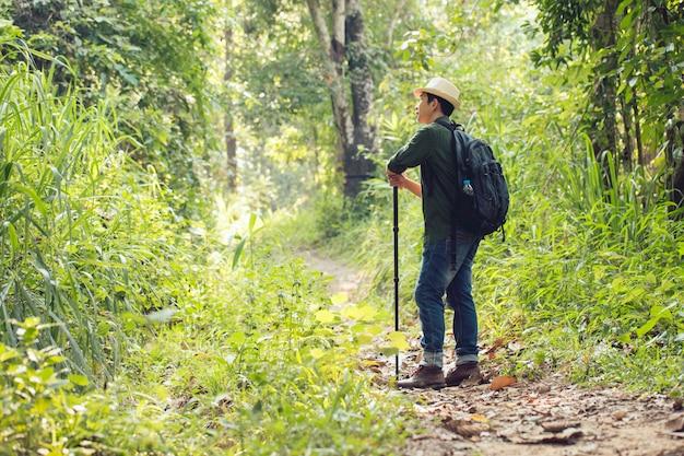 Человек в синем и рюкзаке идет в лес.