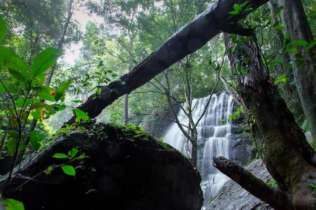 滝山の風景は、公正な光、山の森の滝とフォーカスを選択します。