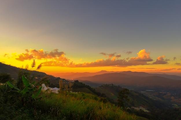 夕日を背景に、山霧と冬の日の出と草の塊