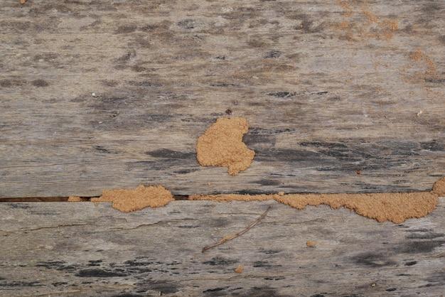 古い木材のテクスチャ背景