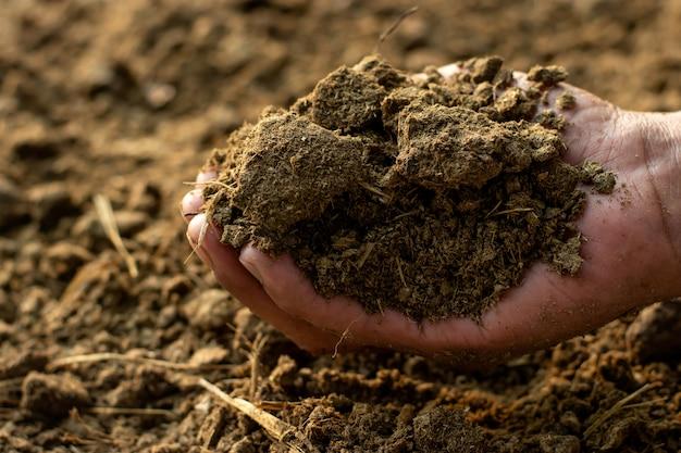 農業用の肥料または糞。