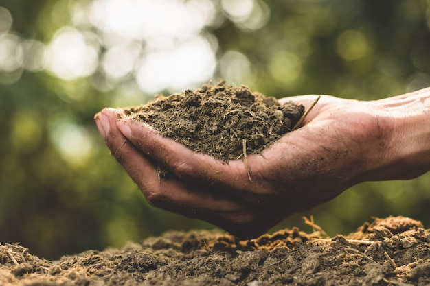 植栽用の糞や肥料。