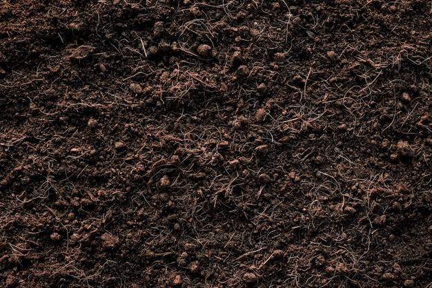 土壌テクスチャ背景、植栽に適した肥沃なローム土壌。