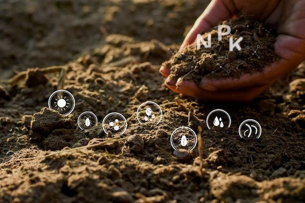 Руки людей держат почву, богатую всеми элементами, необходимыми для выращивания растений, и имеют цифровые значки.