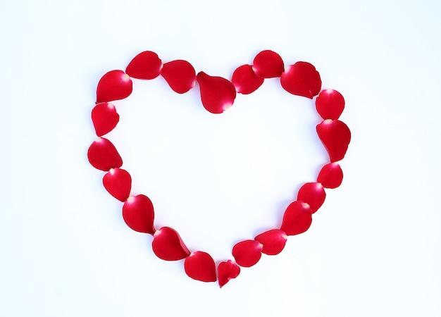 Лепестки красной розы в форме сердца на белом фоне.