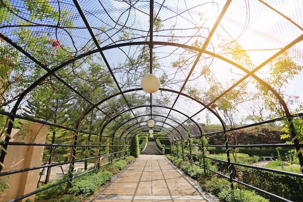 太陽の光が当たる庭の花と木がある金属のトンネルの下の透明な歩道。