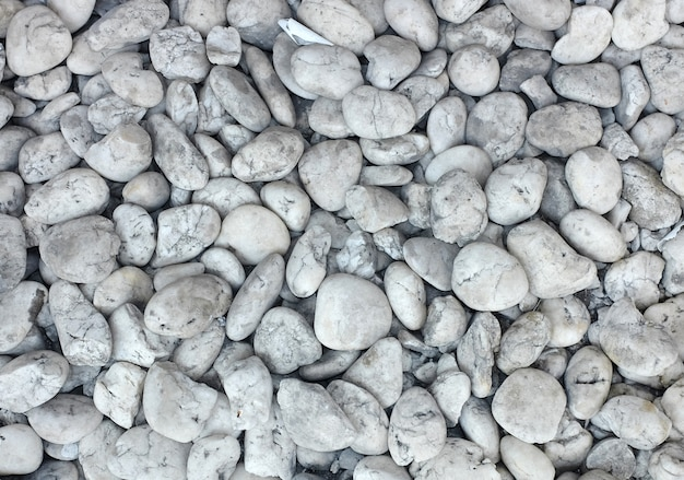 背景の白い砂利の小石