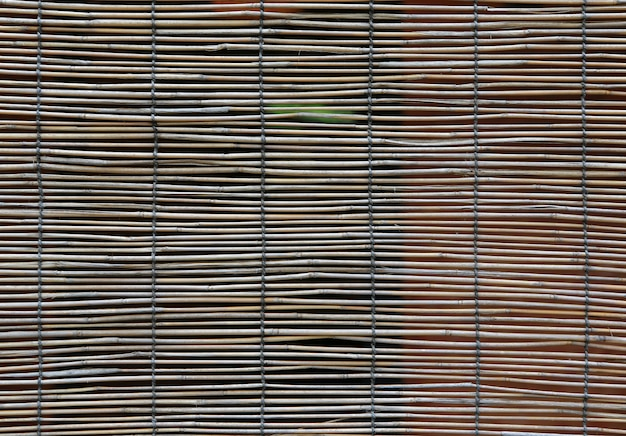 Бамбуковый занавес