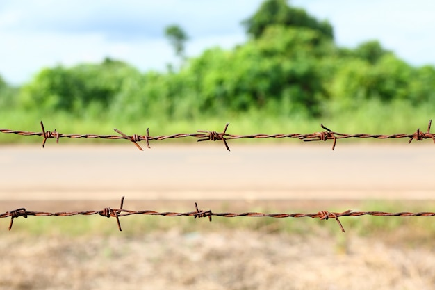 さびた有刺鉄線