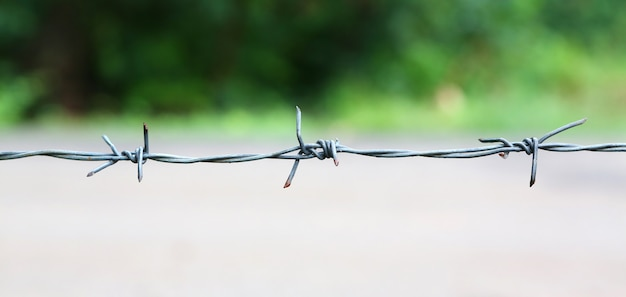新しい鋭い有刺鉄線