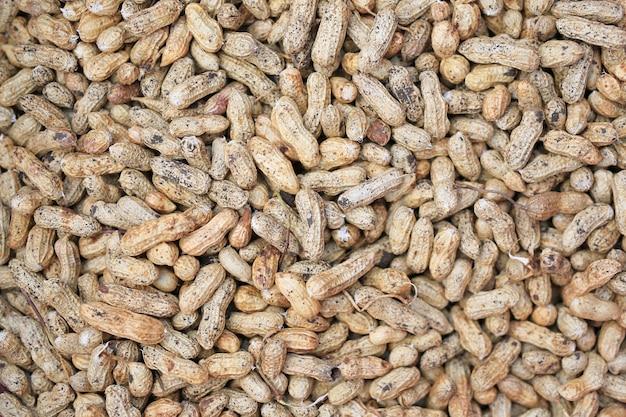 収穫後の土壌と新鮮なピーナッツ