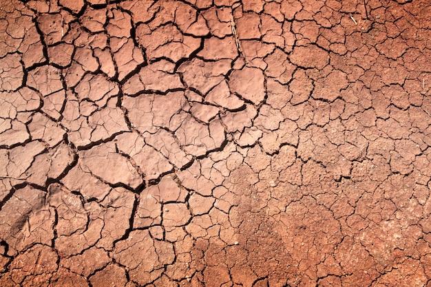 Засуха, земля трещины