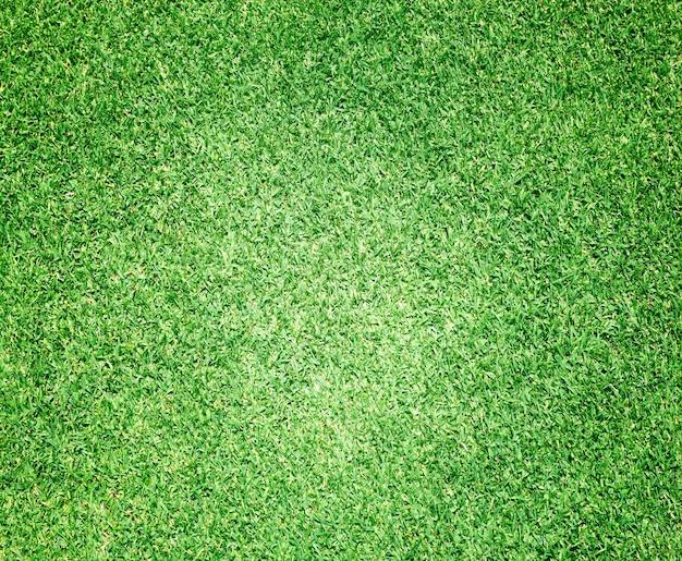 緑の芝生ゴルフコース