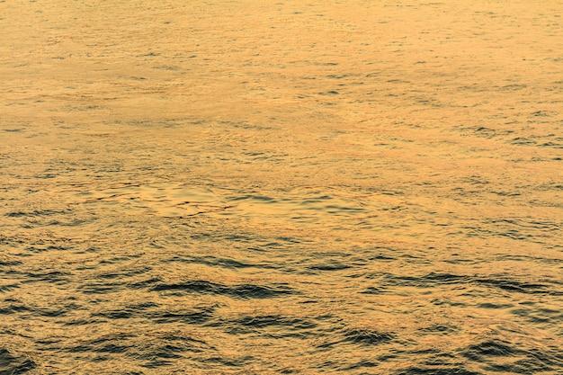海または海の黄色の写真