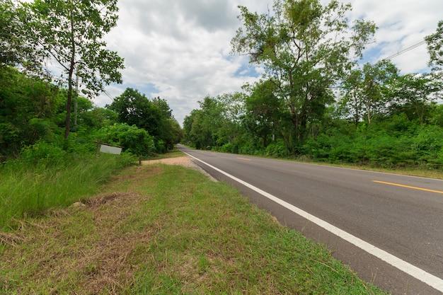 森林をまっすぐに伐採する道路