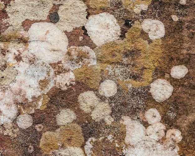 背景の自然腐食からの岩の上の美しいパターンと色