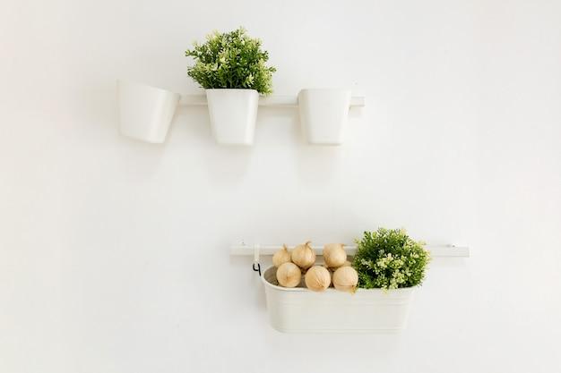 壁に飾られた花の鉢