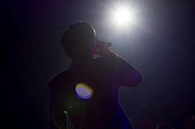 Певица поет песню в концерте