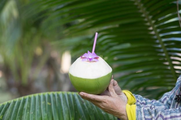 Кокосовые коктейли в руке садовника